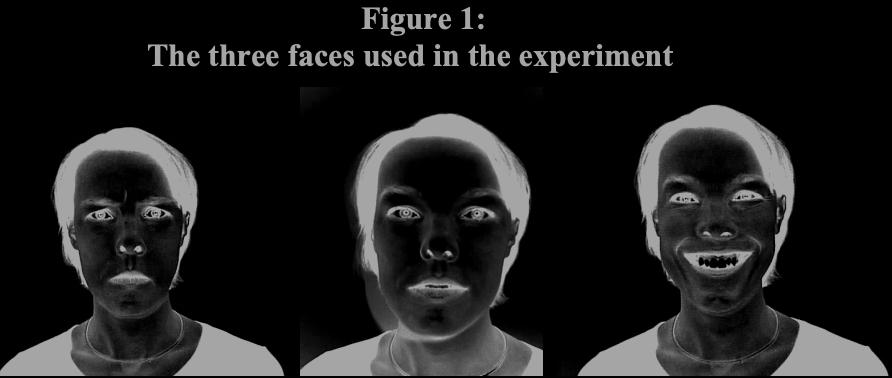 pdf-image-inversion-dark-mode