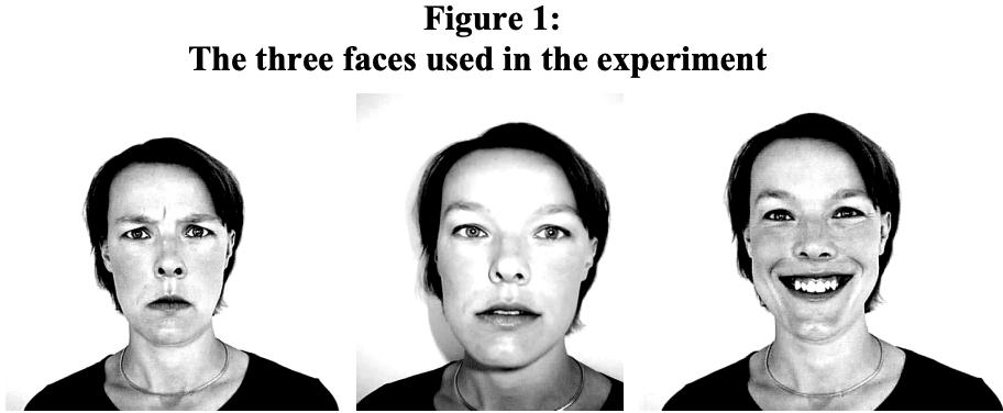 pdf-image-inversion-normal-mode