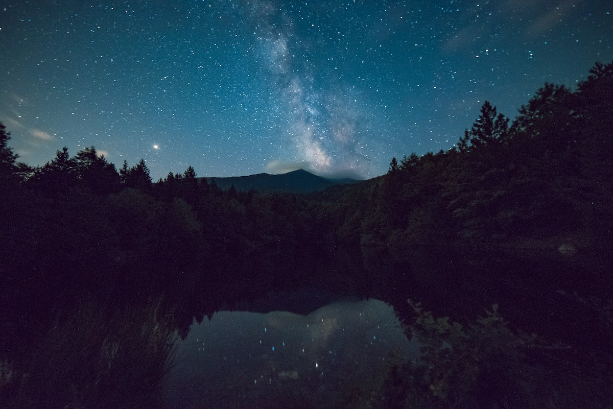 scenic-view-of-forest-during-night-time-1252869